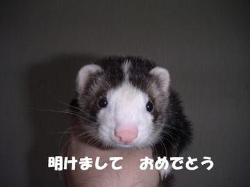 PICT00666